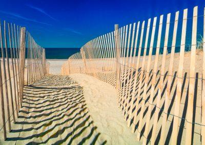 Sand Fence at Sandy Neck Beach, Barnstable