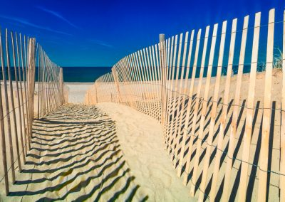 Sand Fence at Sandy Neck Beach, Barnstable